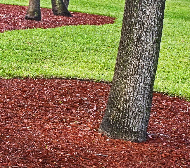 Landscaping Bark Delivery : The convenience and simplicity of mulch delivery