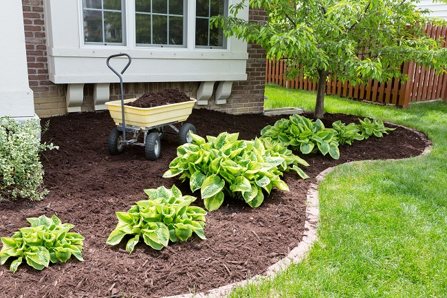 Spring Mulching How Much Does Your Landscape Need